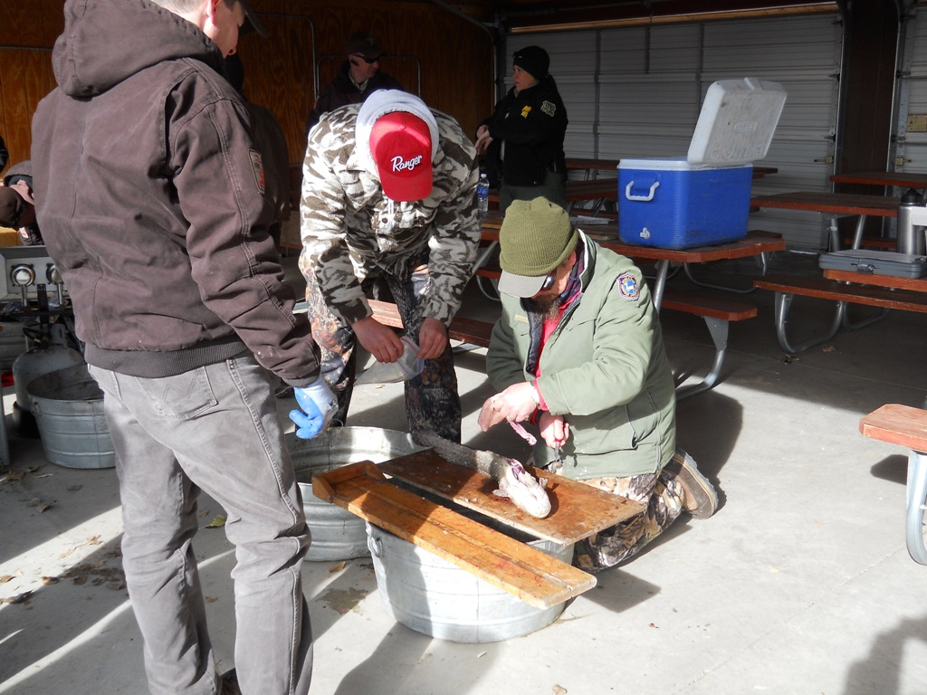 Wyoming Game and Fish and Utah DWR staff inspect burbot at the check-in station prior to the closing ceremonies of the 2012 Burbot Bash