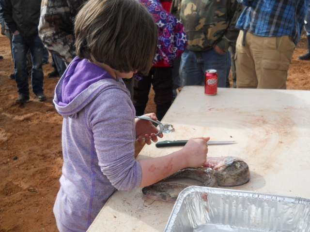Photo of the youngest participant fileting a burbot during the Filet Contest at the Closing Ceremonies for the 2013 Burbot Bash.