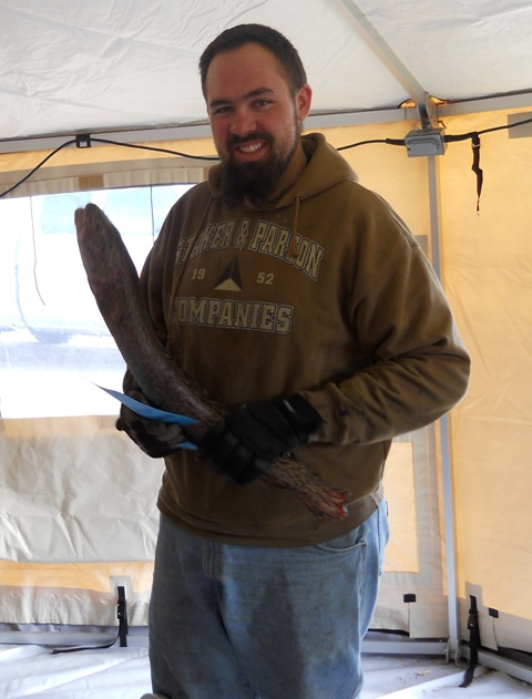 Photo of a fisherman holding a burbot caught in the Flaming Gorge during the 2011 Burbot Bash